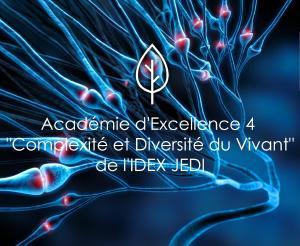 """Académie 4 """"Complexité et Diversité du Vivant"""" de l'IDEX JEDI"""