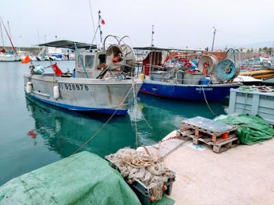 Bateaux Pèches- Port Cannes